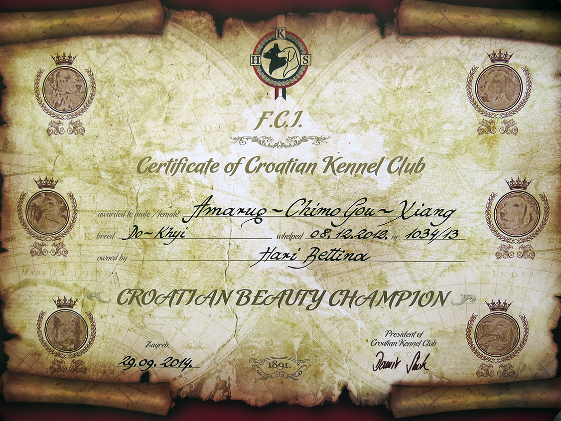 Another Amaruq-Chimo Gou-Xiang's, a.k.a. Sheena's Croatian Junior Champion certificate