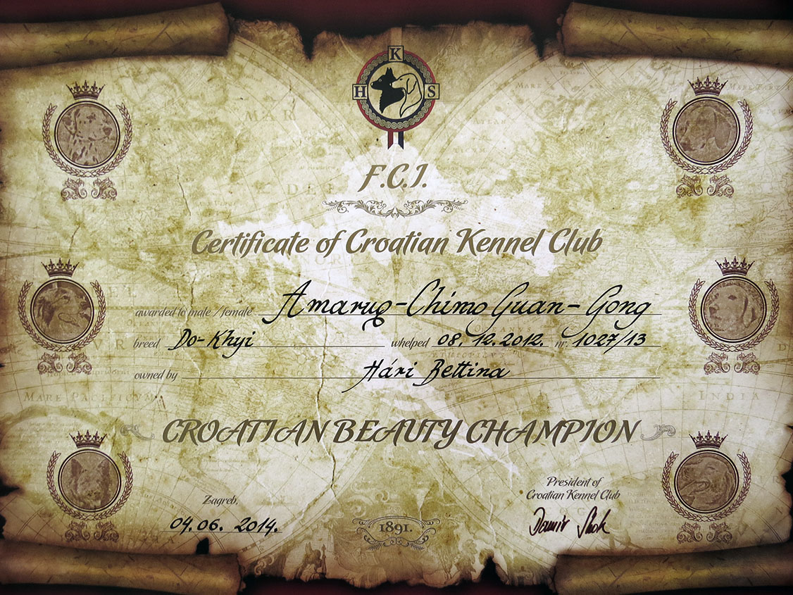 Another Amaruq-Chimo Guan-Gong's, a.k.a. Sultan's Croatian Junior Champion certificate