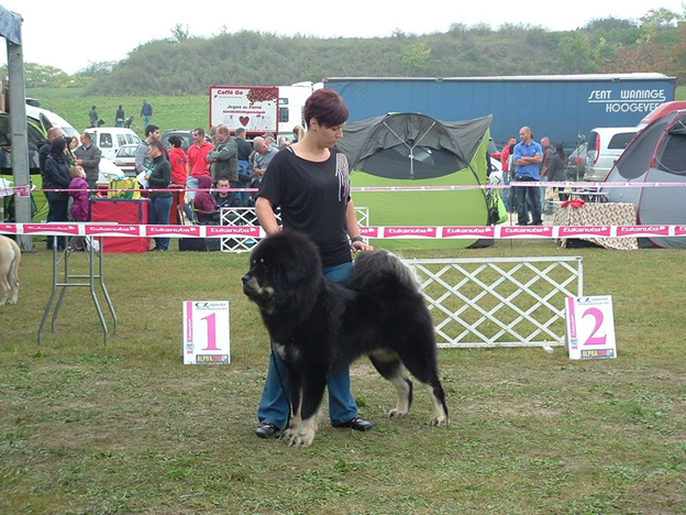 Bettina Hári, the founder of Sadaksari, and her award-winning Tibetan Mastiff dog, Sultan.